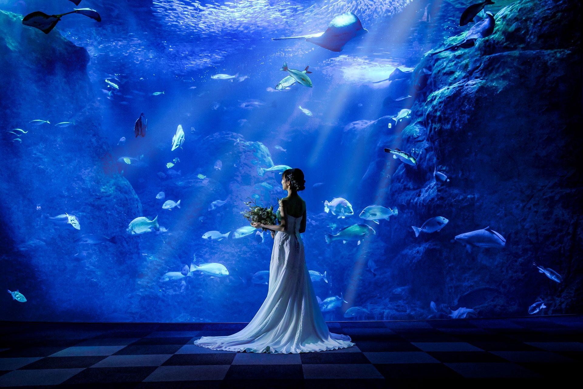 湘南・江ノ島の自然溢れるスポットで絵画のような写真を残しましょう。